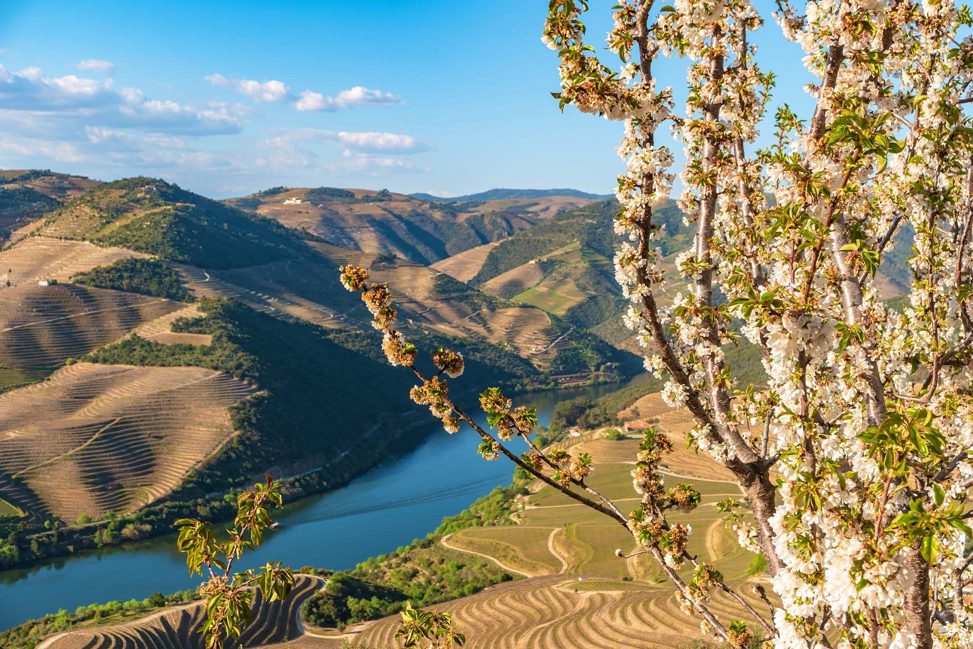 Nothing but picturesque views and small crowds in the Douro Valley © AnaMOMarques Getty Images / iStockphoto