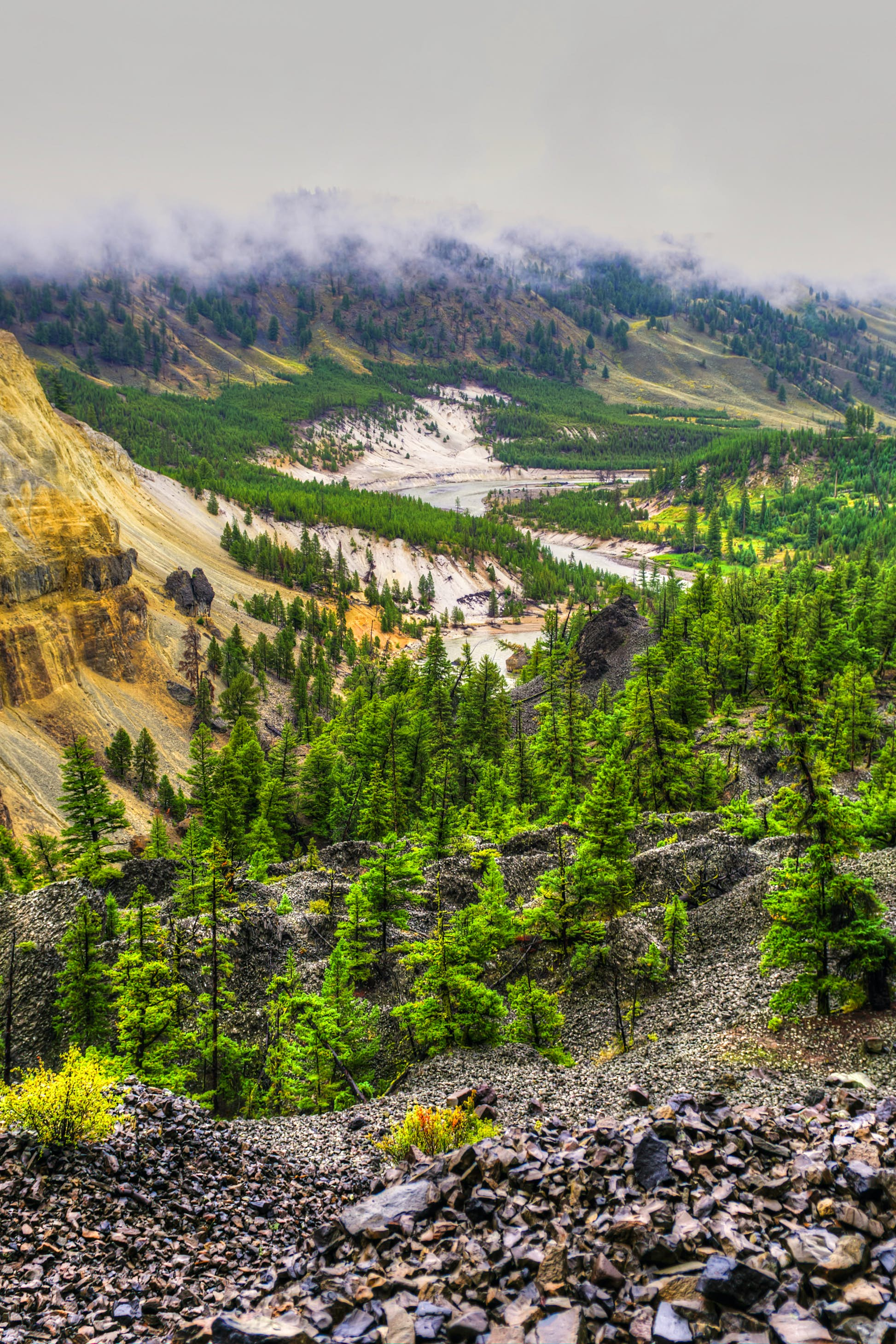 Cloud-covered mountains and forest at Yellowstone National Park © BGSmith / Shutterstock