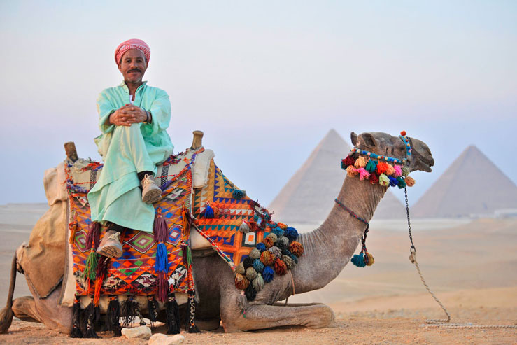 A guided tour could be the best way to explore the Pyramids. © Peter Seaward/Lonely Planet